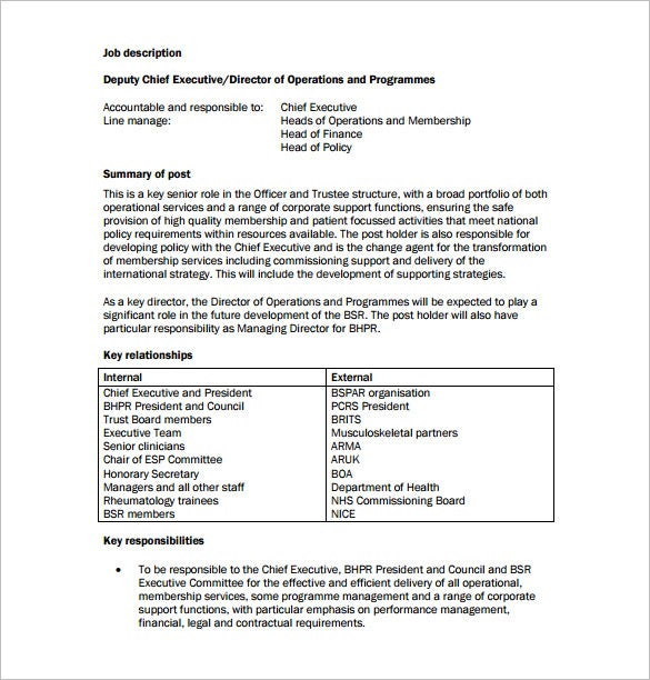 deputy chief executive officer job description free pdf template