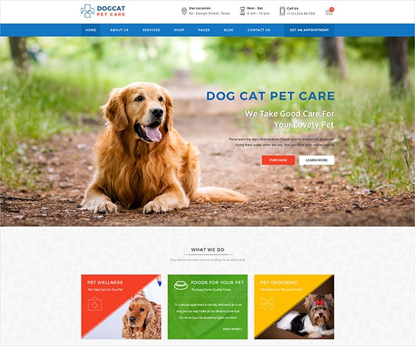 pet doctor psd template