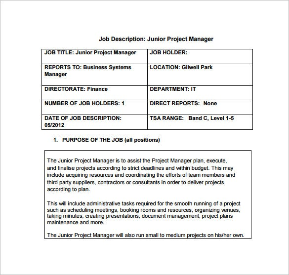 free junior project manager job description pdf template