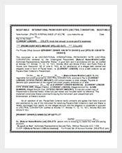 Negotiable-International-Promissory-Note