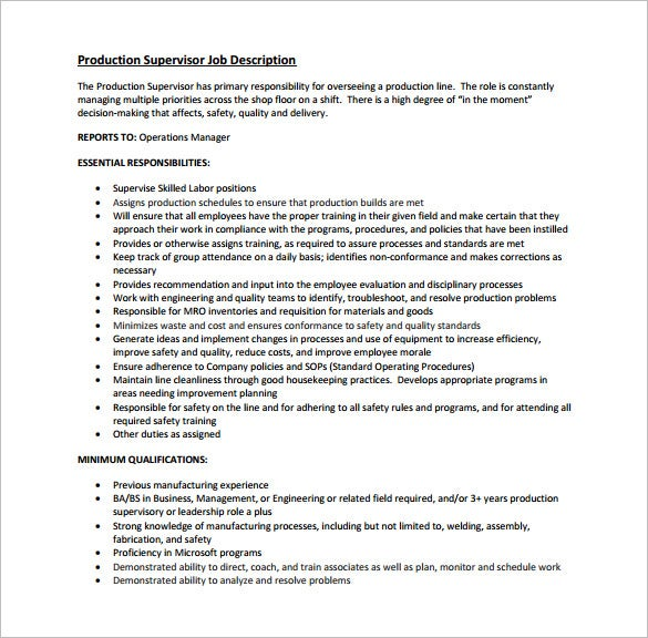 Sample Product Manager Job Description 8 Examples In Pdf Word