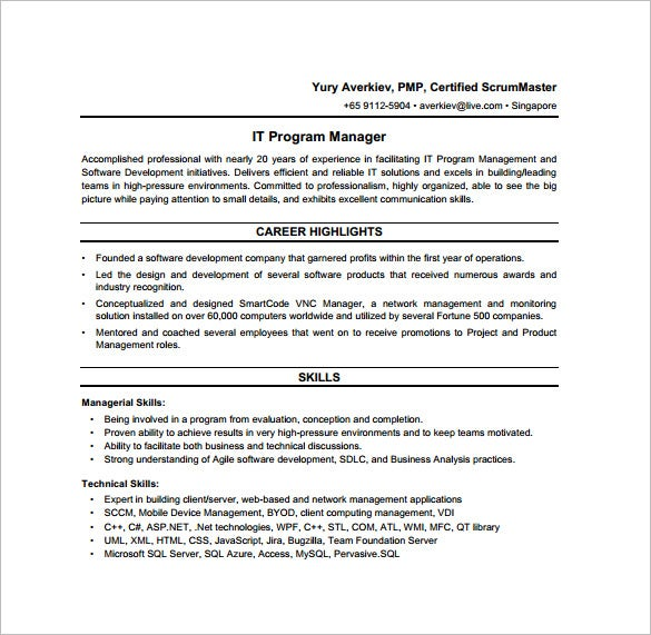 it program manager job description pdf free download