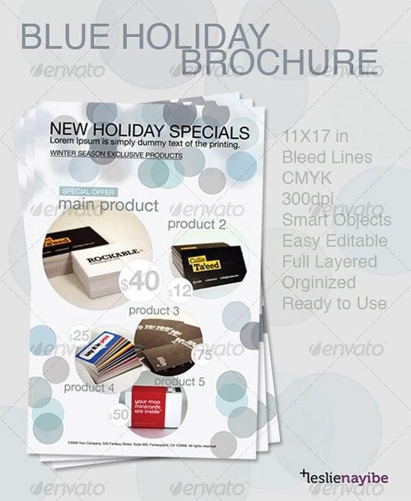 blue holiday brochure