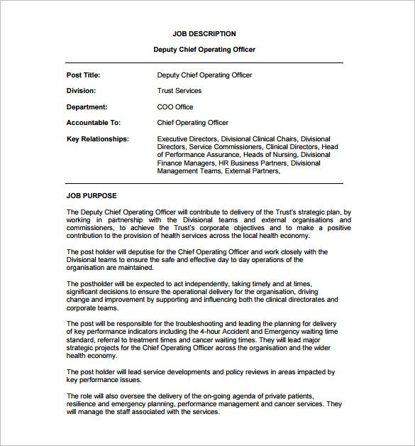 Deputy Chief Operating Officer Job Description Free PDF Format Download