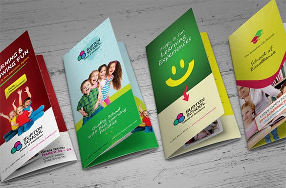 junior school trifold bifold brochures design