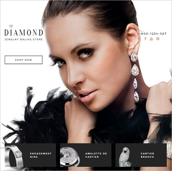 blog theme for diamond shop