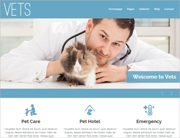 veterinary medical health clinic website theme