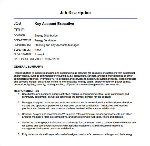 Key Account Executive Job Description PDF Free Download