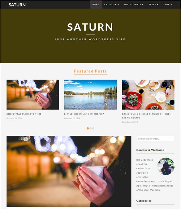 responsive travel blog theme