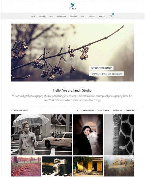 photography magazine wordpress bootstrap theme