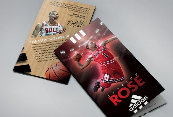 download adidas derrick rose basket ball brochure