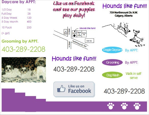 fun doggy daycare revised brochure pdf format