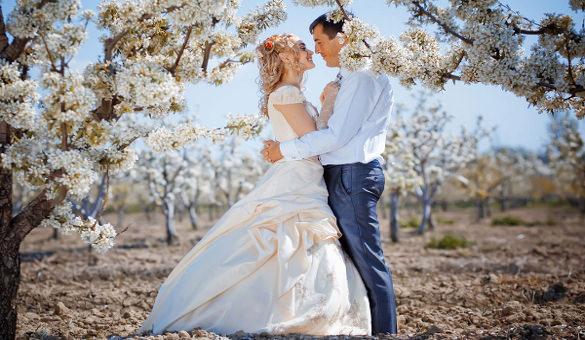 Wedding joomla Themes