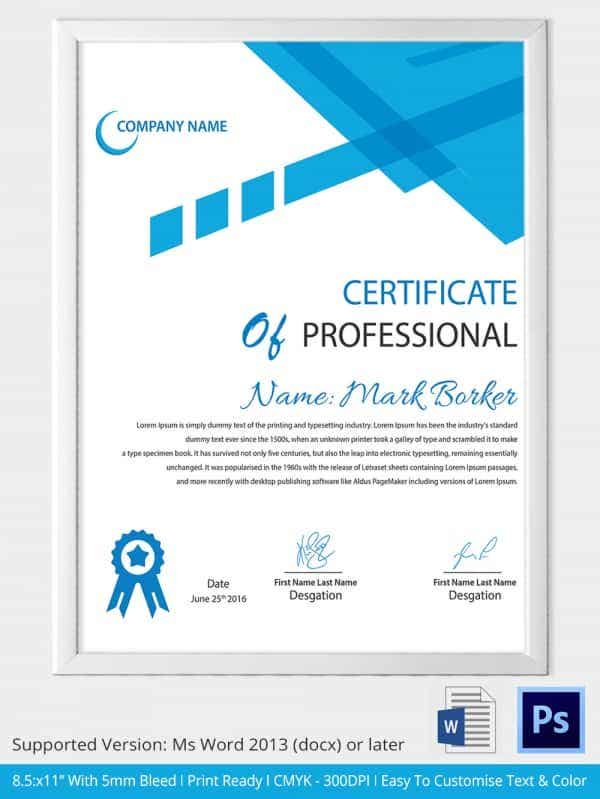 Professional Certificate Template in Word Format