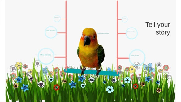 bird prezi background template example download