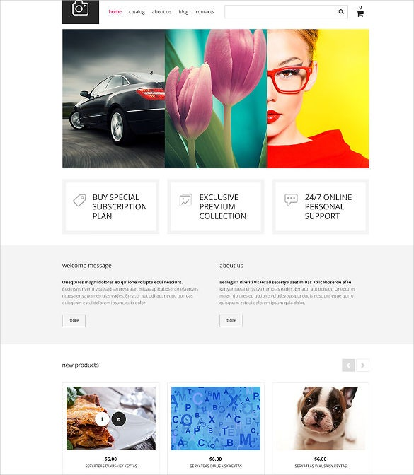 photography club virtuemart blog template