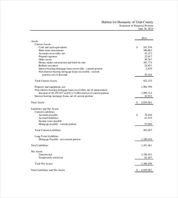 non profit organisation income statement pdf file