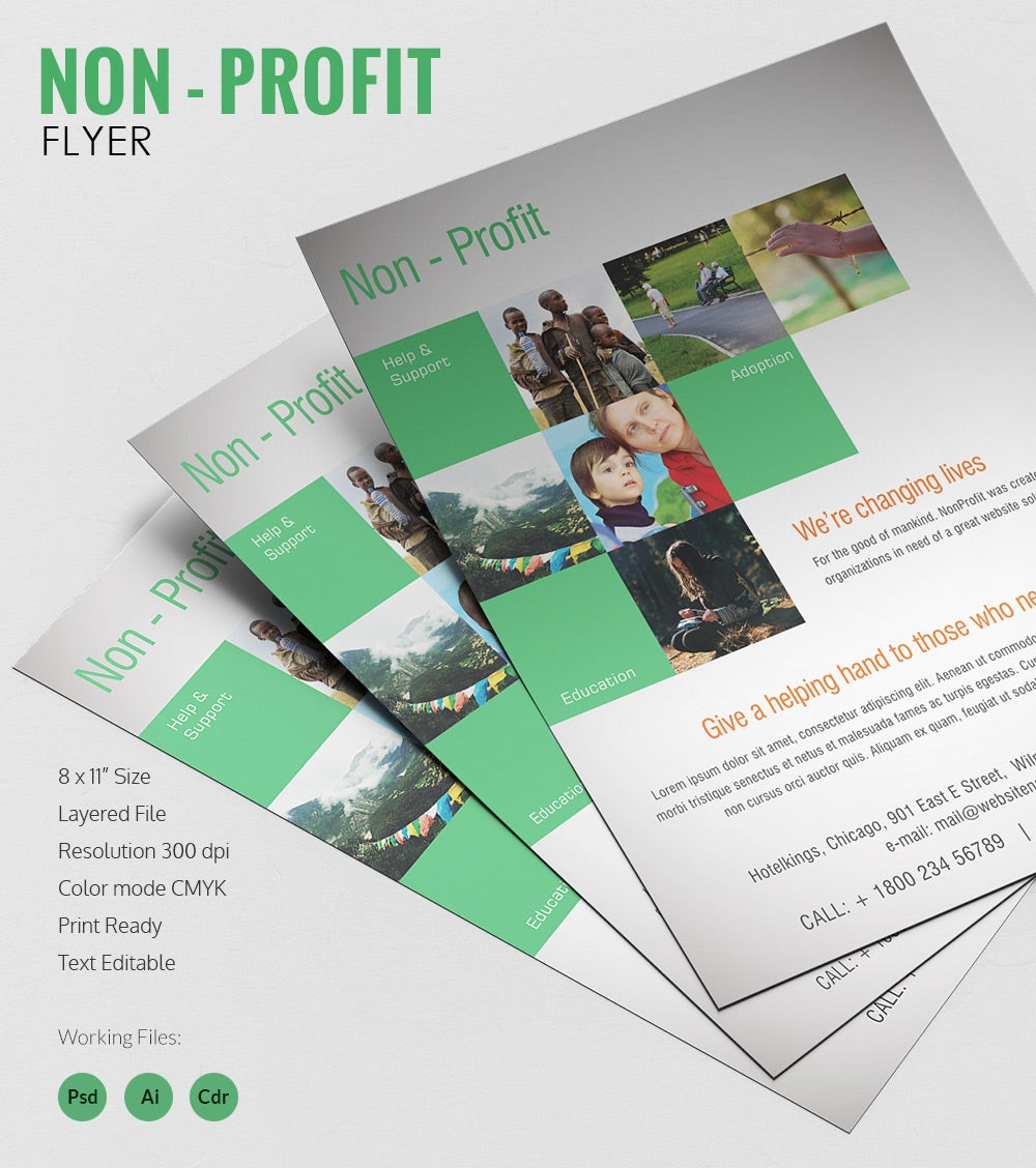 Admirable Non Profit Flyer Template Free Premium Templates