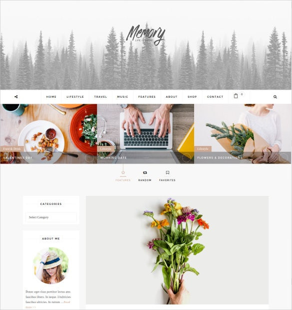 mobile friendly wordpress blog website theme