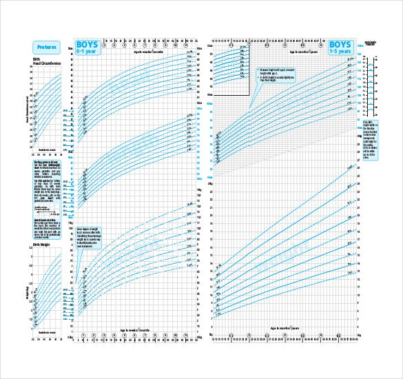 Baby Growth Chart Template   Free Word Excel Pdf Documents
