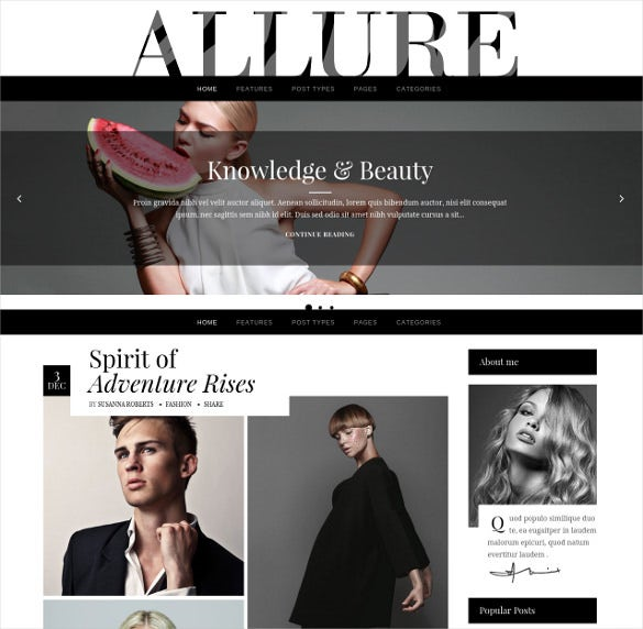 allure a fashionable blog theme