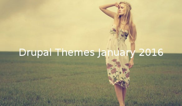 Drupal Themes January 2016