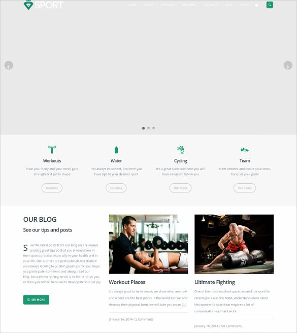 responsive sports page builder wordpress them