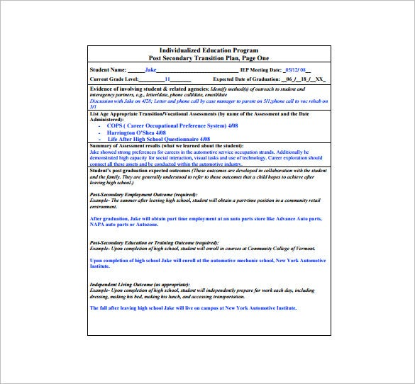 Role transition plan template for Executive transition plan template