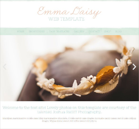 fully responsive photographer wordpress photo website theme