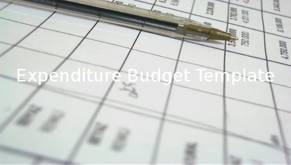expenditurebudgettemplate1