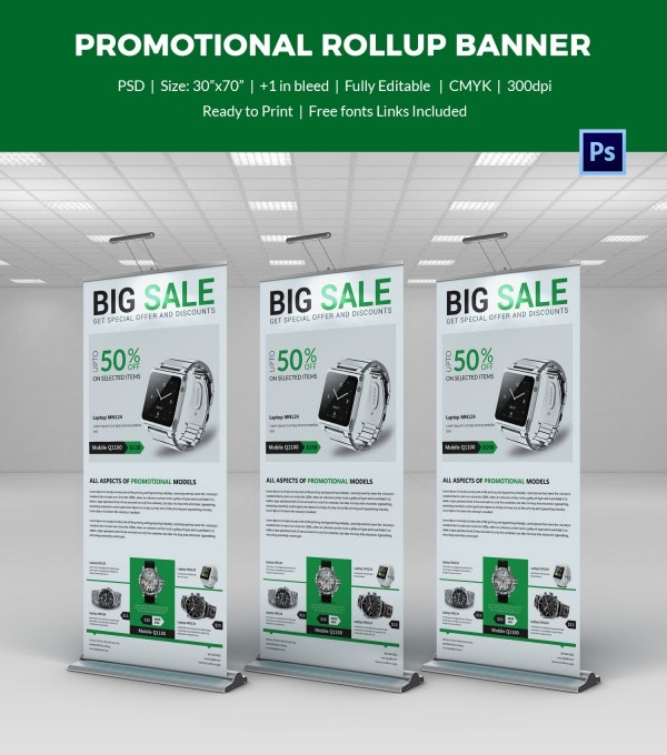Promotional Rollup Sample Banner Template