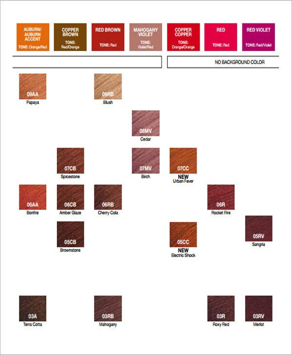 Hair Color Chart Template   Free Word Pdf Documents Download
