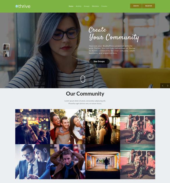 community membership wordpress theme