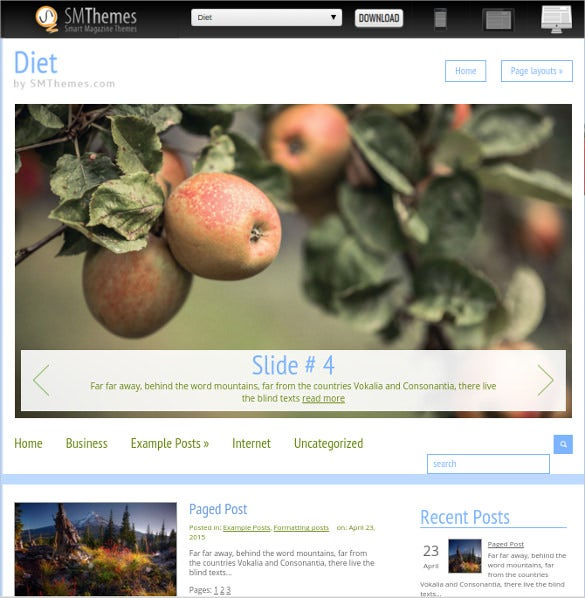 best diet wordpress theme 28