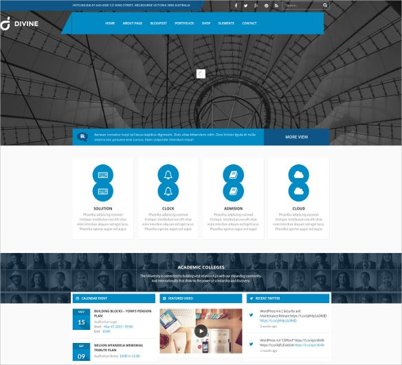 divine professional business wordpress theme