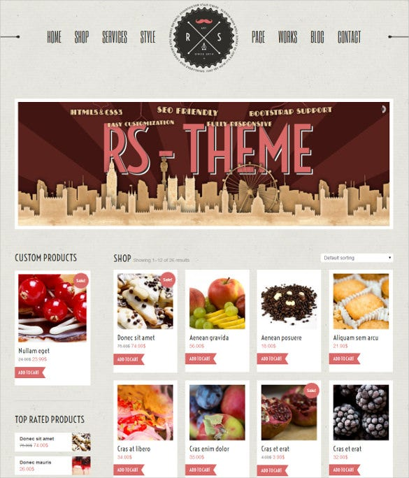 responsive premium wordpress theme