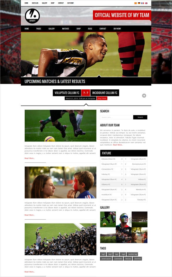 word press theme for soccersports club
