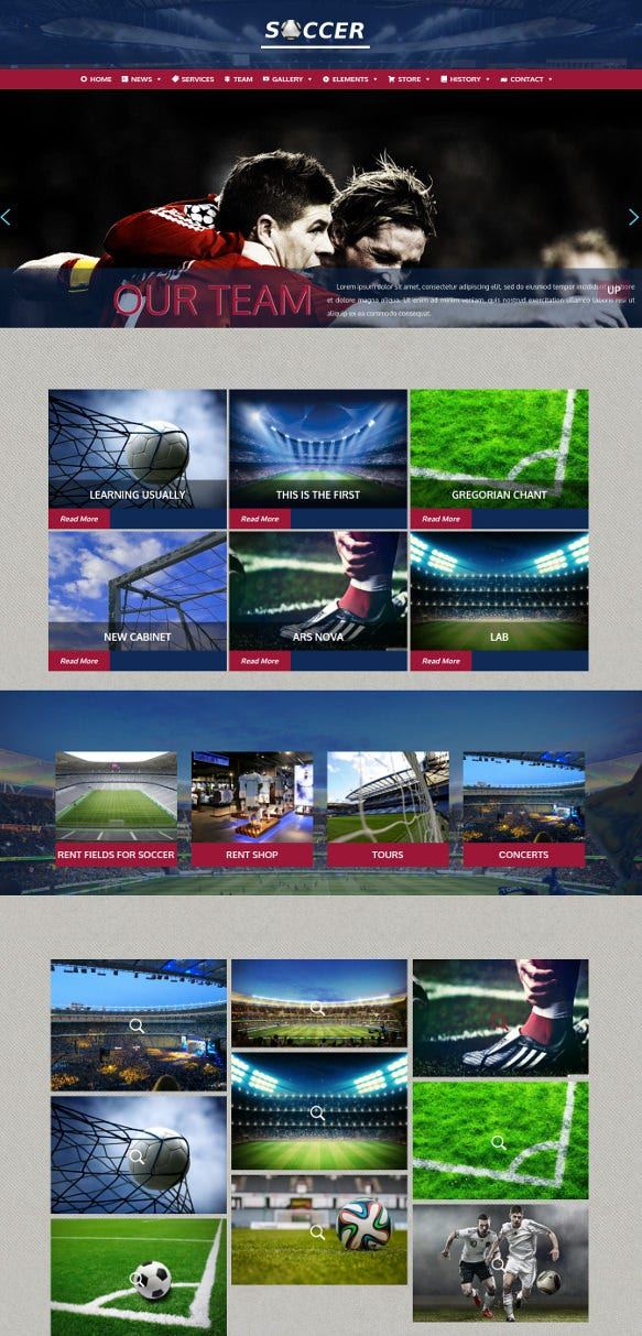 soccer sports club wordpress theme
