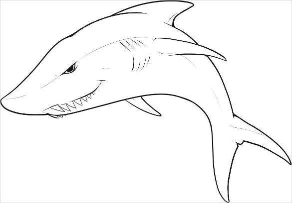 awesome-shark-drawing-template
