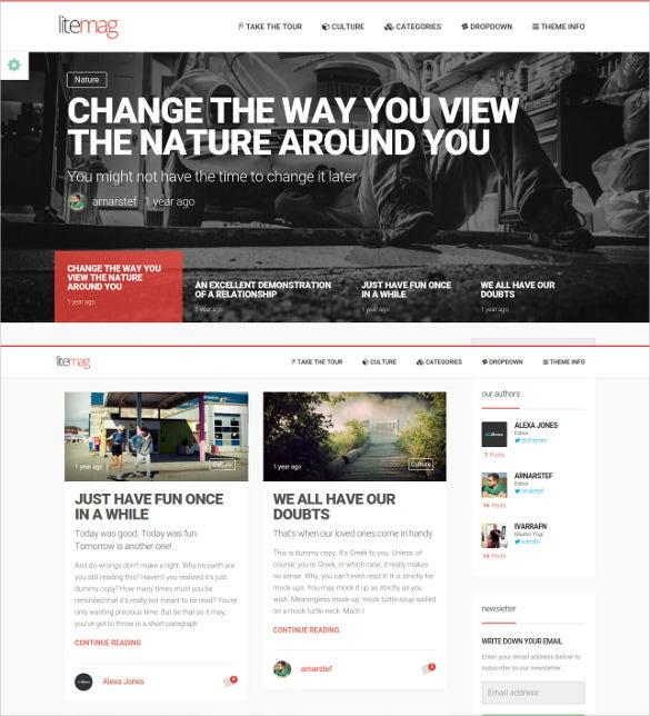 litemag easy to use minimalist magazine theme 59