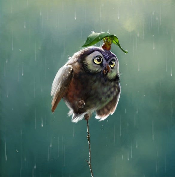 free owl rat digital art download