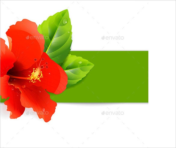 floral background with hibiscus eps format