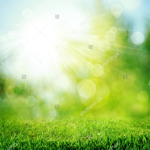 bright sun green natural backgrounds