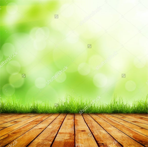 fresh spring green grass background download