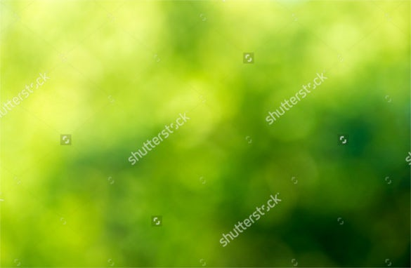 download green blurred background and sunlight