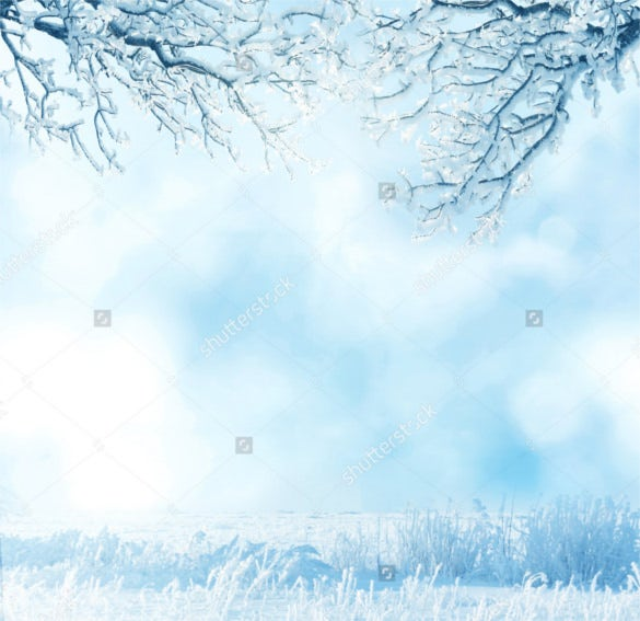 beautiful snow trees winter background download