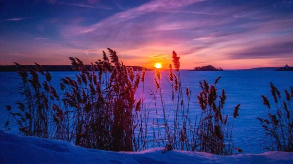 winter sunset snow grass background for laptop