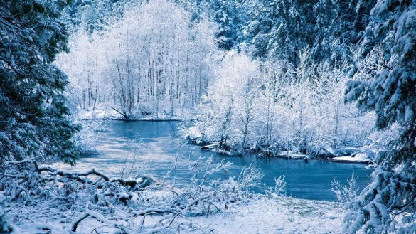 winter river snow trees landscape background for phone