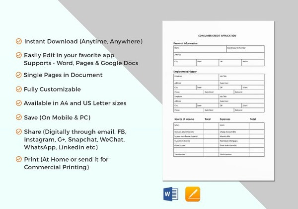consumer credit application template1