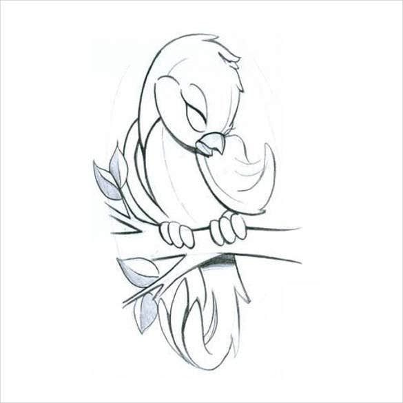 pretty-cute-bird-drawing-template